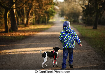 Boy 10-11 years walking the dog in autumn Park. He is...
