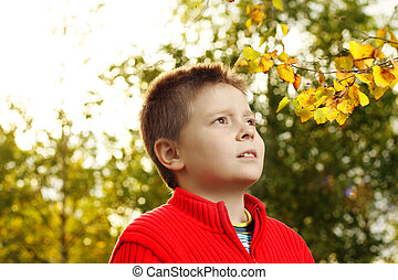 Boy and autumn leaves