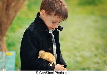 boy and birds