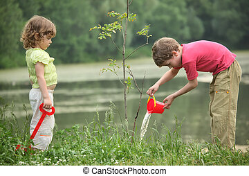 boy and girl pour on seedling of tree - boy and girl pour on...