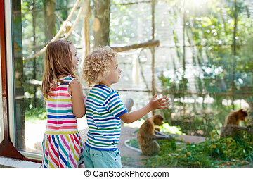 Boy and girl with monkey at. Kids and animals.