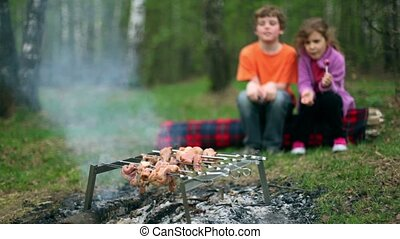 Boy and little girl sit on log covered with plaid and watch at fresh meat on embers, blossom leaves in grove at spring day