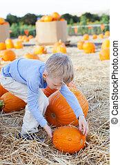 boy at pumpkin patch