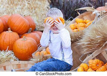 boy at the pumpkin patch