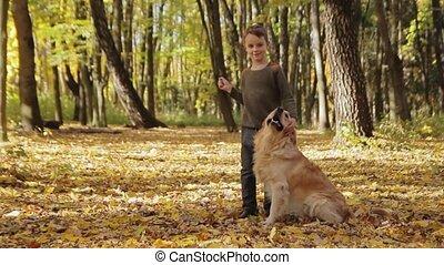 Boy caress golden retriever dog in the park. Autumn Sunny...