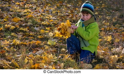 boy collecting bouquet with yellow leaves in park