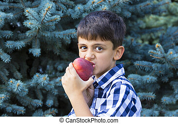boy eating a peach - boy eats a ripe juicy red peach