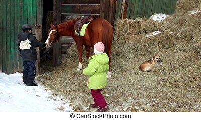 Boy feed horse, his sister give hay to horse, dog lies on haystack