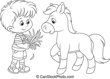 Boy feeds a pony