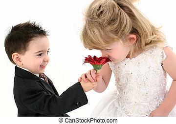 Boy Girl Flower Cute - Toddler boy offering a daisy to...