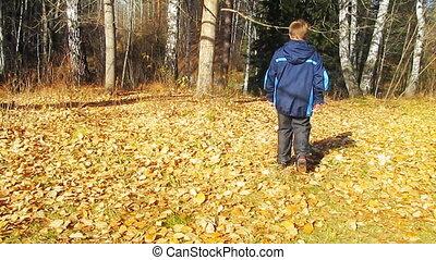boy going in autumn garden