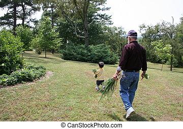 Boy Grandpa Garden