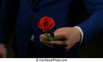 Boy hands out a rose as his valentine present for his lover