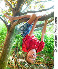 Boy hanging from a tree branch
