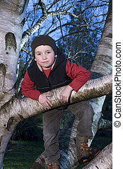 Boy hanging in tree