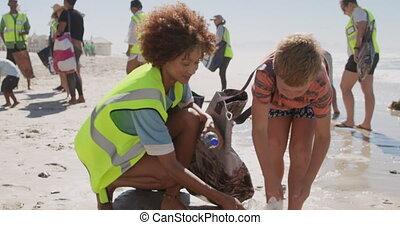 Boy helping female volunteer in cleaning beach 4k