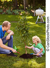 Boy holding a small tree