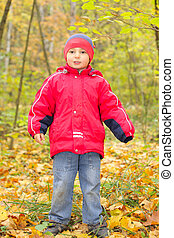 Boy in autumn forest