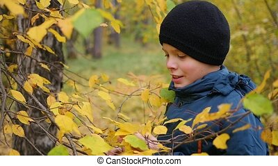 Boy in autumn Park having fun playing with the leaves, walks...
