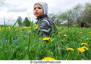 boy in dandelions
