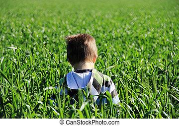 boy in green field