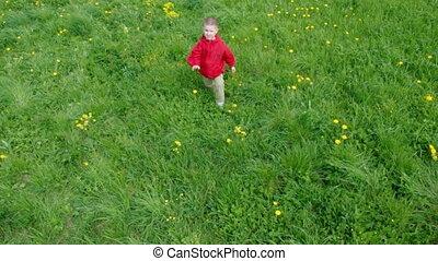 boy  in herb on mea