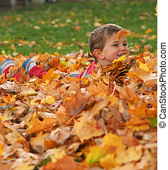 Boy in leaf pile