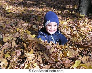 boy in maple leaves