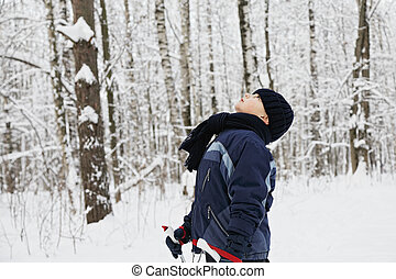 Boy in winter forest looking up