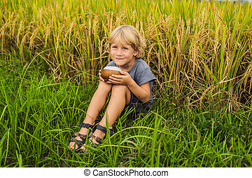 Boy is holding a cup of boiled rice in a wooden cup on the background of a ripe rice field. Food for children concept