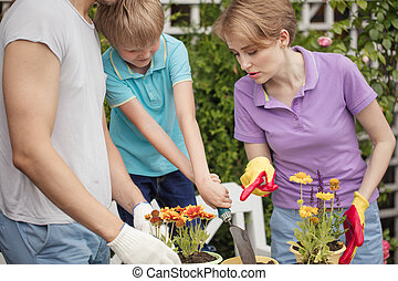Boy kid helps parents planting flower in pot. Gardening, planting concept.