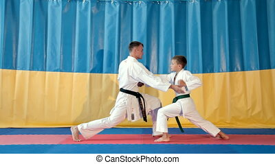 Boy Learning a martial art