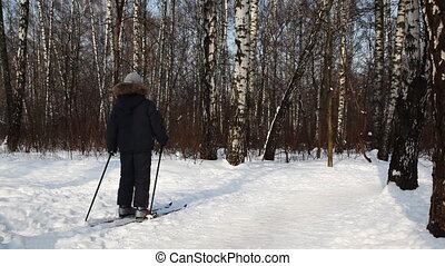 Boy leaves skiing in winter birch forest