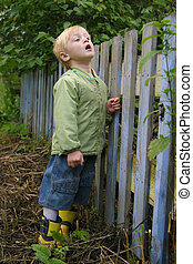 Boy with surprise looks through a fence. The boy is three years, blond hair, blue eyes, wear autumn, the weather is cloudy