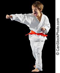 Boy martial arts fighter