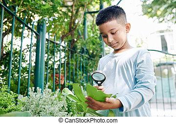 Boy observing nature