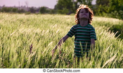 Boy on Summer Vacation - Little curly red-haired boy stands...