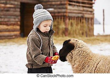 Little boy on the farm in winter