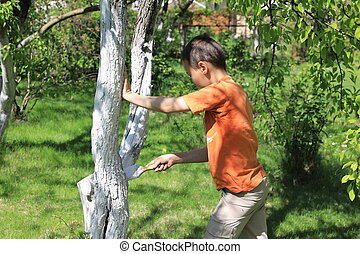 Boy painting tree in garden