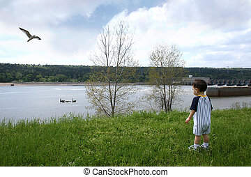 Boy Park Geese