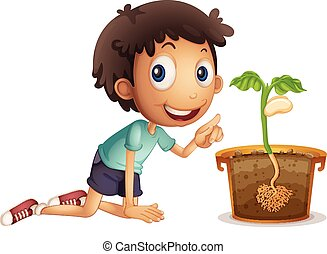Boy planting seed in the pot
