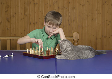boy playing chess with cat