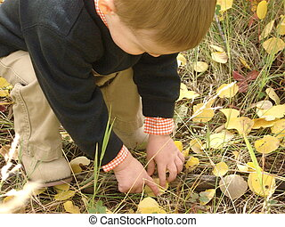 Boy playing in the Leaves