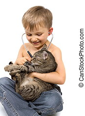 Boy Playing with Cat and Stethoscop