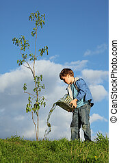 boy pours on seedling of tree by water