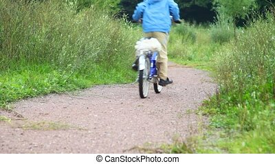 boy riding bicycle in park, from camera