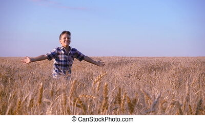 boy running on golden wheat field, slow motion