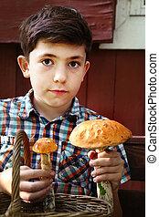 boy show orange-cap mashrooms