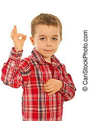 Boy showing okay sign hand gesture - Little boy showing okay...