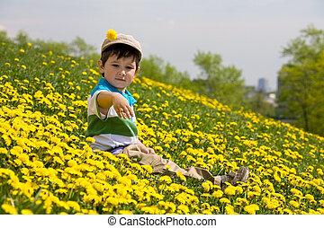 Boy sits on a grass